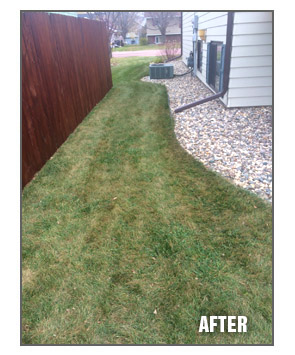 Fall Amp Spring Clean Up Services Cutting Edge Lawn