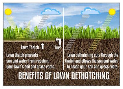 Power Raking De Thatching Services Cutting Edge Lawn
