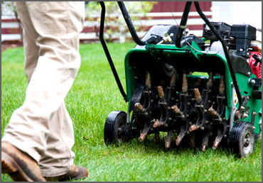Cutting Edge Lawn Amp Property Services Llc Lawn Care